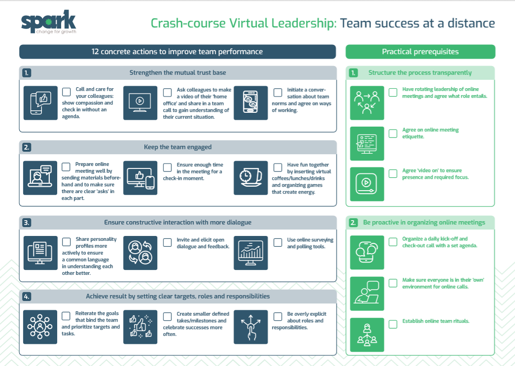Crash Course in Virtual Leadership by Sonya Richardson, Spark for Growth